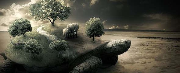 Surreal Turtle Image